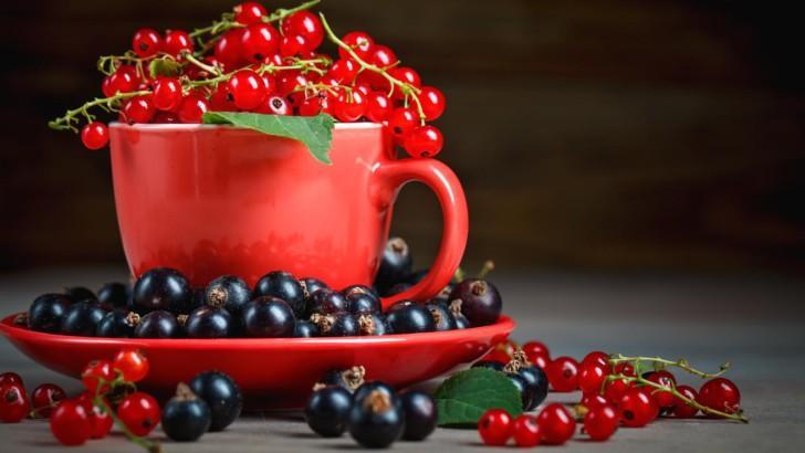 Листья смородины при беременности. Чёрная смородина при беременности: секреты вкусной ягоды